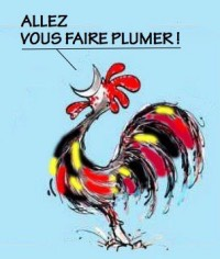 allezvous-faireplumer-200