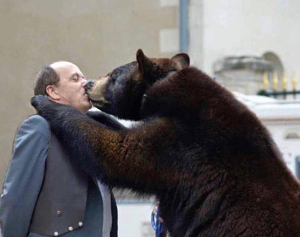 Autissier-et-ours-2