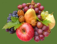 Automne-fruits - copie