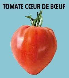 fausses tomates c ur de b uf le scandale continue gilblog jean pierre gilbert. Black Bedroom Furniture Sets. Home Design Ideas