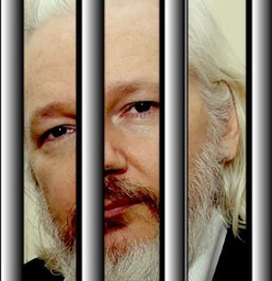 1-Assange-barreaux